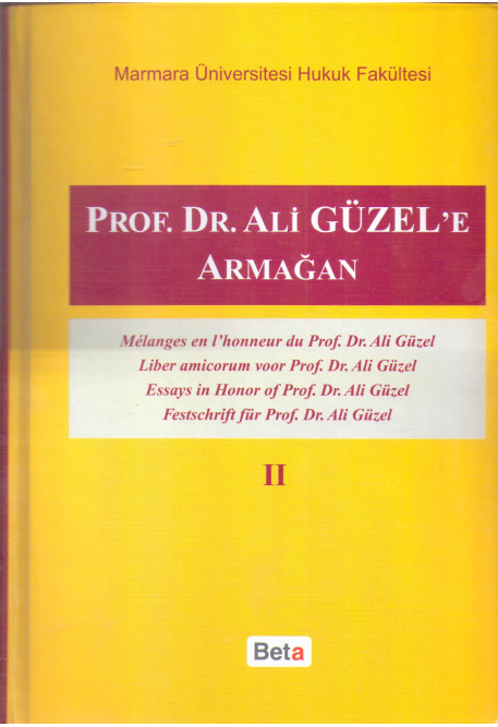 Prof. Dr. Ali Güzel'e Armağan