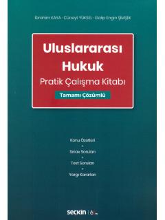 Uluslararası Hukuk Pratik Çalışma Kitabı